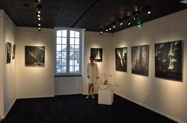 01 l artiste peintre verena von lichtenberg de strasbourg et l exposition d art nord licht a saint quentin en yvelines