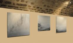 01a die kunstausstellungen der malerin verena von lichtenberg aus darmstadt bei franfurt ihre bilder in museen und galerien im louvre grand palais in moscous tokyo new york paris
