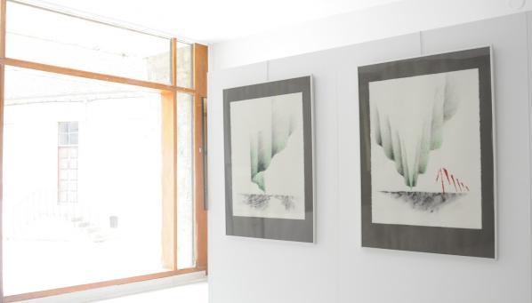 01a les expositions d art de l artiste peintre verena von lichtenberg dans les galeries d art et musees francois pompon