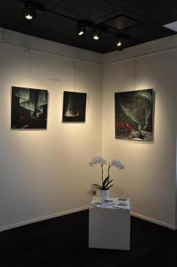 02 l exposition d art nord licht de l artiste peintre verena von lichtenberg de strasbourg ses tableaux d art en musee ou galerie a paris new york tokyo moscou ou miami