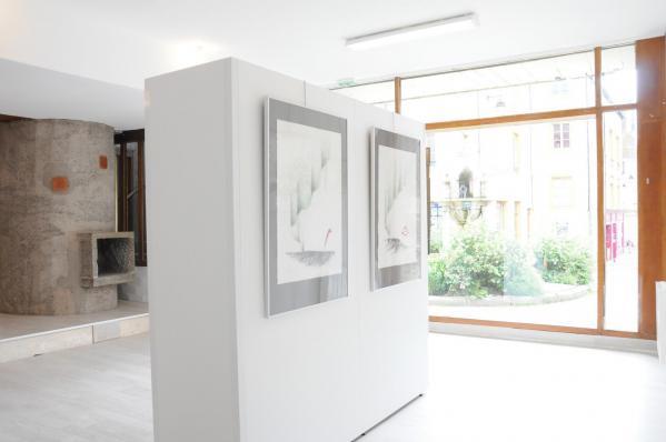 02a les expositions d art et de peinture dans les musees et galerie d art musee francois pompon evev l artiste peintre verena von lichtenberg de paris