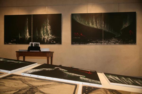 Les tableaux oeuvres d art nord licht de l artiste peintre Verena von Lichtenberg a Bruges avec Bob vanantwerpen et Suzanne Dusauteir