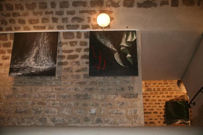 05 vel artiste peintre verena von lichtenberg et les tableaux d art nord licht a paris