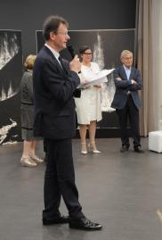 05c1 l exposition d art champagne alsace l artiste peintre verena von lichtenberg de paris ses oeuvres d art et peinture en musee d art et galerie