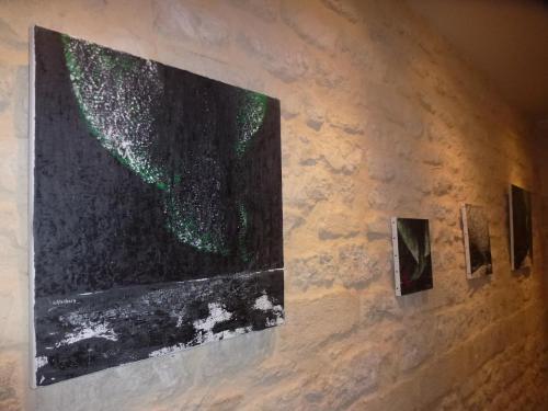06les-nouvelles-toiles-de-l-artiste-peintre-verena-von-lichtenberg-a-paris-dans-le-6eme.jpg
