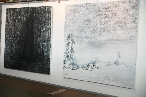 07 l exposition d art de l artiste peintre verena von lichtenberg en galerie ou en musee a paris et new york lumiere autrale ou nord licht