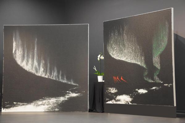 07a les expositions d art et de peintures qui etaient au louvre grand palais de paris de l artiste peintre verena von lichtenberg de paris la voila en alsace champagne avec les mus