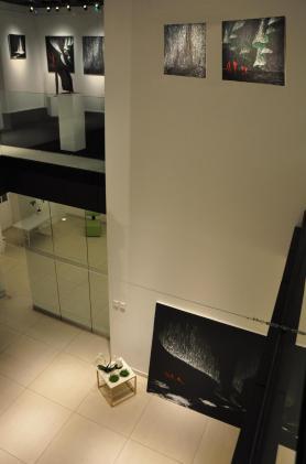 09a die kunst ausstellung der malerin verena von lichtenberg aus strasbourg ist in saint quentin en yvelines in der art galerie sie sind auch in museen von paris tokyo new york mia