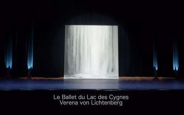 1 versailles buc le ballet du lac des cygne et l artiste peintre verena von lichtenberg