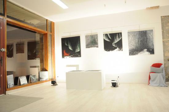 102 exposition d art de paris a la galerie d art du muse e pompon l exposition d art de l artiste peintre verena von lichtenberg