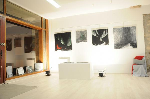 102 exposition d art de paris a la galerie d art du musee pompon l exposition d art de l artiste peintre verena von lichtenberg