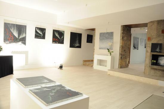 103 exposition d art de paris verena von lichtenberg artiste peintre et les oeuuvres d art a la galerie d art du musee pompon