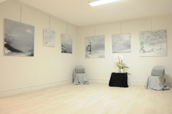 108 exposition d art de paris verena von lichtenberg et les oeuvres d art lumiere australe au musee popon de saulieu en bourgogne