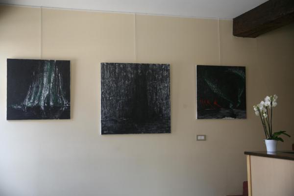 11 die ausstellung in der galerie art expression in auxerre mit der artiste peintre verena von lichtenberg