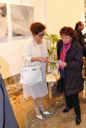 16 l artiste peintre verena von lichtenberg et josiane boret fournier l exposition d art arts sciences lettre a la galerie d art