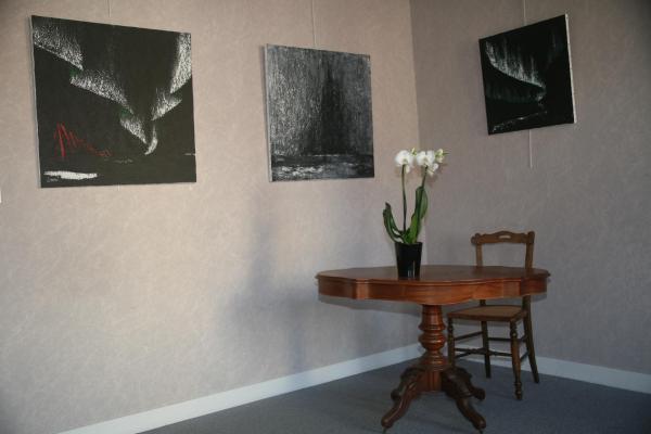 20 die ausstellung der artiste peintre verena von lichtenberg in der galerie d art art expression in auxerre des tableaux et oeuvres d art moderne