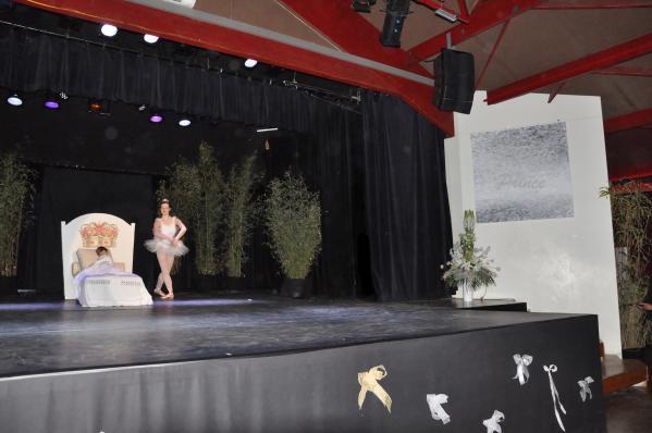 20 se nateur de pute maires secre taire ge ne ral un ballet et une exposition d art avec des tableau pour le lac des cygnes et verena von lichtenberg artiste peintre alain schmitz