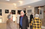 20 vvl l exposition d art de l artiste peintre verena von lichtenberg de paris a la galerie d art du musee pompon en bourgogne