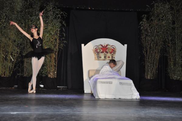 21 le petit prince de st exupe ry un ballet et une exposition d art avec les tableaux et oeuvres d art de l artiste peintre verena von lichtenberg