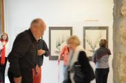 21a les oeuvres d art de l exposition de l artiste peintre verena von lichtenberg a la galerie d art du musee pompon de saulieu une exposition d art des musees de bourgogne