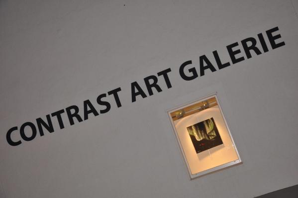 24 verena von lichtenberg l artiste peintre et l exposition d art nord licht a la galerie contrast art en belgique