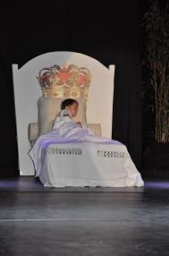 24 1 un ballet une exposition d art le petit prince de saint exupe ry alain schmitz jean no el barrot franc ois de mazie res et verena von lichtenberg artiste peintre