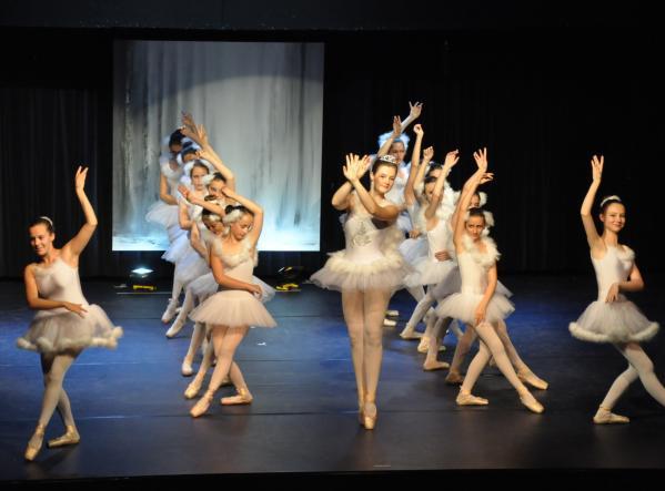 2a le ballet du lac des cygne l artiste peintre verena von lichtenberg une danse et exposition d art et de peinture versailles