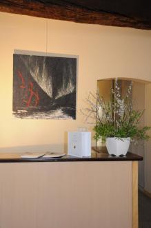 32 l exposition d art nord licht de l artiste peintre verena von lichtenberg a la galerie d art art expression a auxerre