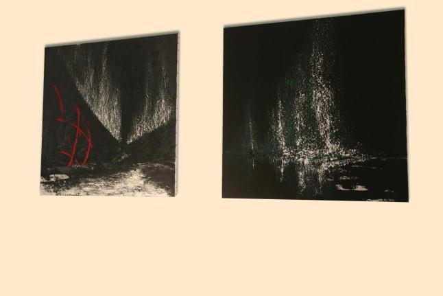 33 the exhibition nord licht and the painter verena von lichtenberg