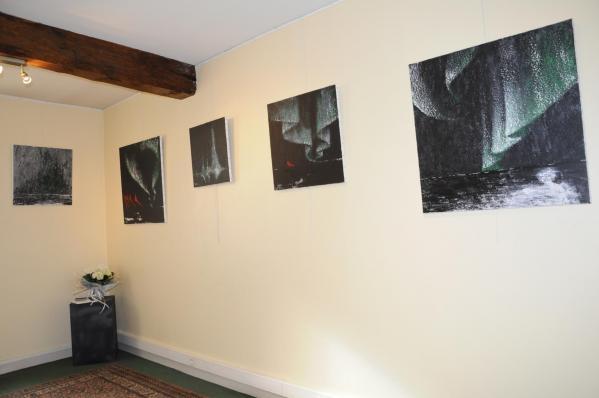 49 les oeuvres d art nord licht de l artiste peintre verena von lichtenberg une exposition d art a la galerie d art art expression a auxerre en bourgogne