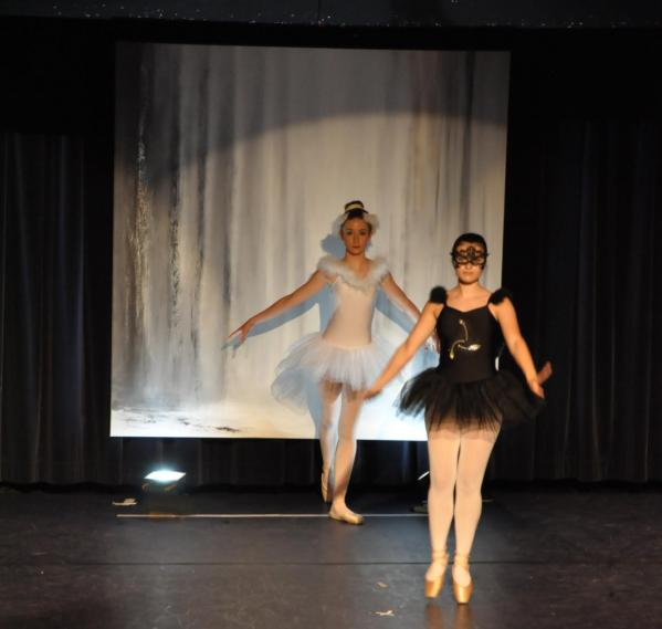5 le ballet du lac des cygne l artiste peintre verena von lichtenberg une danse et exposition d art et de peinture versailles