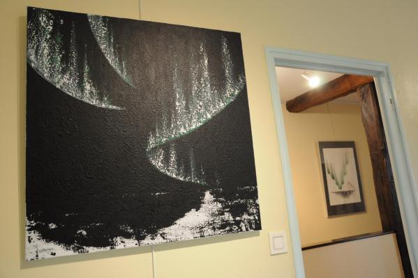 50 l exposition d art nord licht les tableaux et oeuvres d art de l artiste peintre verena von lichtenberg a la galerie d art art expression a auxerre