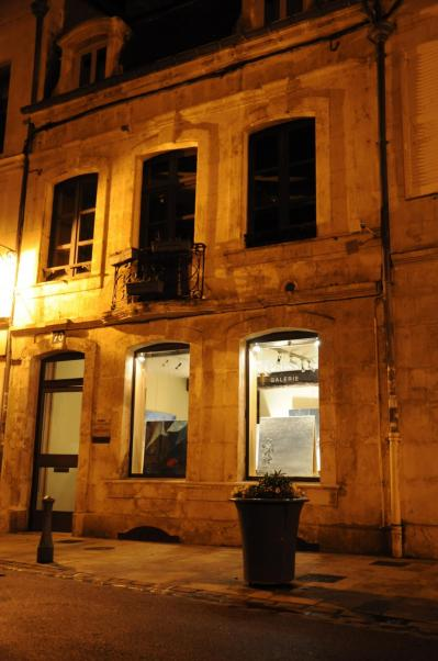 64 the gallery art expression in auxerre and the exhibition confrontation the painter verena von lichtenberg and her works lumiere australe and nord licht