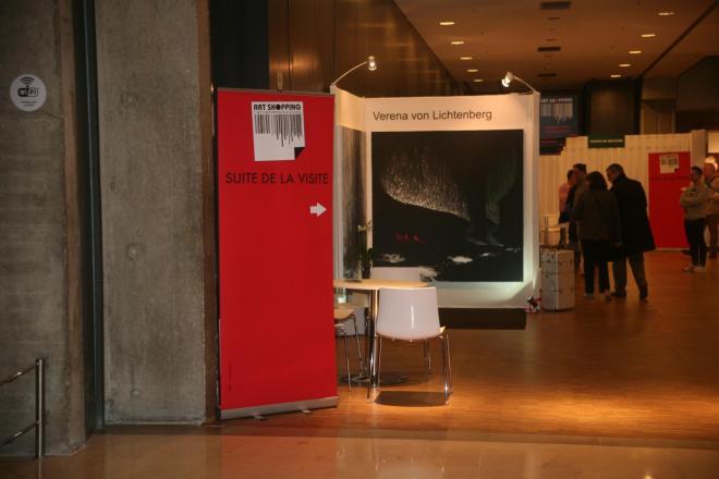 7a verena von lichtenberg artiste peintre et l exposition d art nord licht elle est au carouselle du louvre a paris