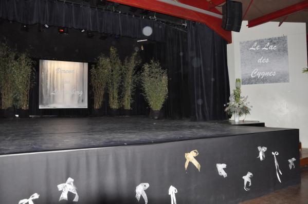 8 un ballet avec des oeuvres d art lac des cygnes et verena von lichtenberg artiste peintre alain schmitz jean no el barrot franc ois de mazie res