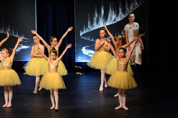 A14 tableaux d art exposition et ballet le petit prince verena von lichtenberg artiste peintre paris