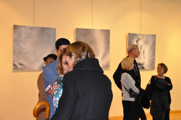 A4 les tableaux d art de l artite peintre verena von lichtenberg une exposition d art a madrid