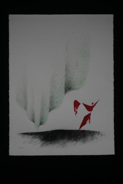 D les aurores boreales de l artiste peintre verena von lichtenberg