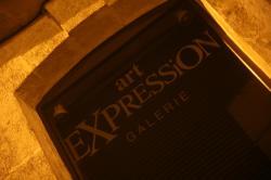 Die galerie expression von claude larrive in auxerre und die kunstlerin verena von lichtenberg mit ihrer ausstellung nord licht