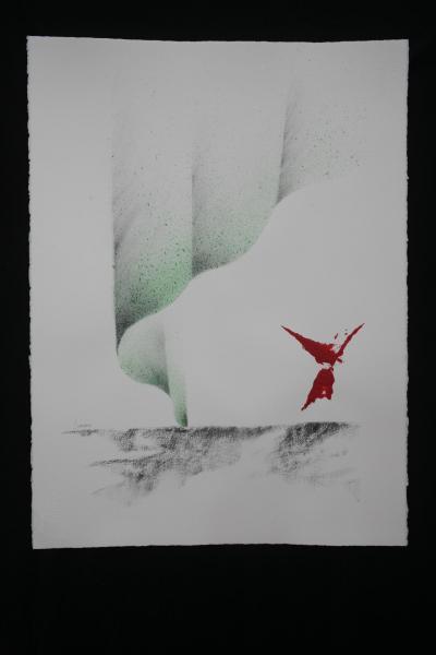 I sommerwinde nord licht auroress boreales le tableaux de verena von lichtenberg