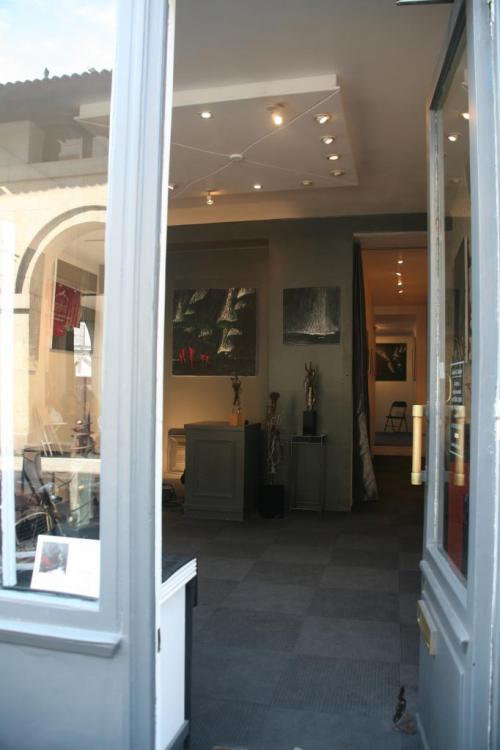 l-artiste-peintre-verena-von-lichtenberg-est-a-paris-avec-l-exposition-nord-licht.jpg