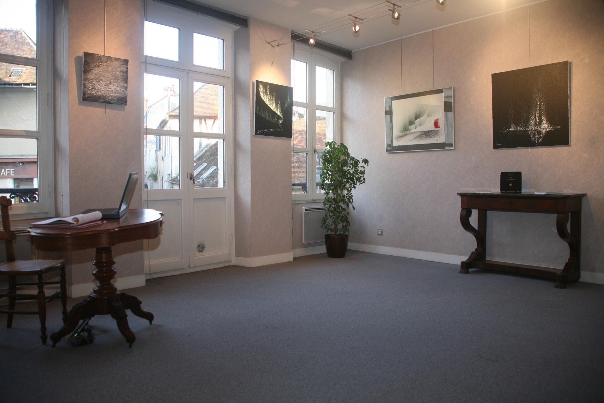 L artiste peintre verena von lichtenberg est les peinture de l exposition d art nord licht sont a auxerre a la galerie expression de claude larrive