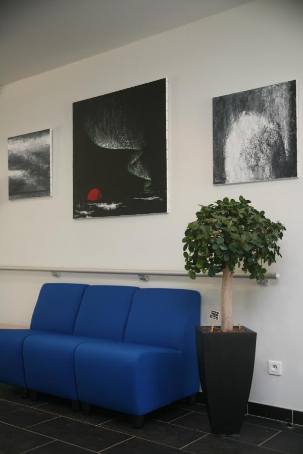 Les tableaux et oeuvres d art de l expositin nord licht de l artiste peintre verena von lichtenberg sont a saint quentin en yvelines 1