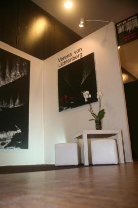 Nord licht verena von lichtenberg une artiste peintre de paris au ici louvre avec ses tableaux et oeuvres d art 2