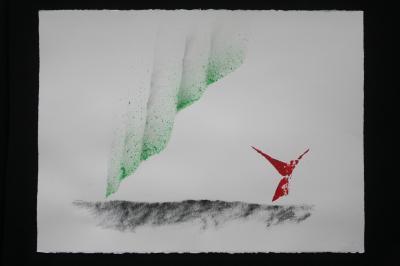 O verena von lichtenberg une artiste peintre a paris et les oeuvres aurores boreales le grand nord