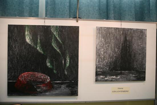 z-148-l-artiste-peintre-verena-von-lichtenbrg-et-les-aurores-boreales.jpg